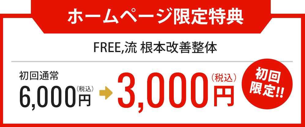 【ホームページ限定特典】 FREE,流根本改善整体6,000円が初回限定3,000円